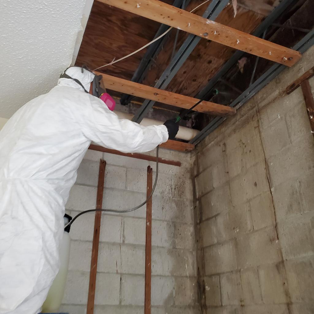 Roof damage restoration service