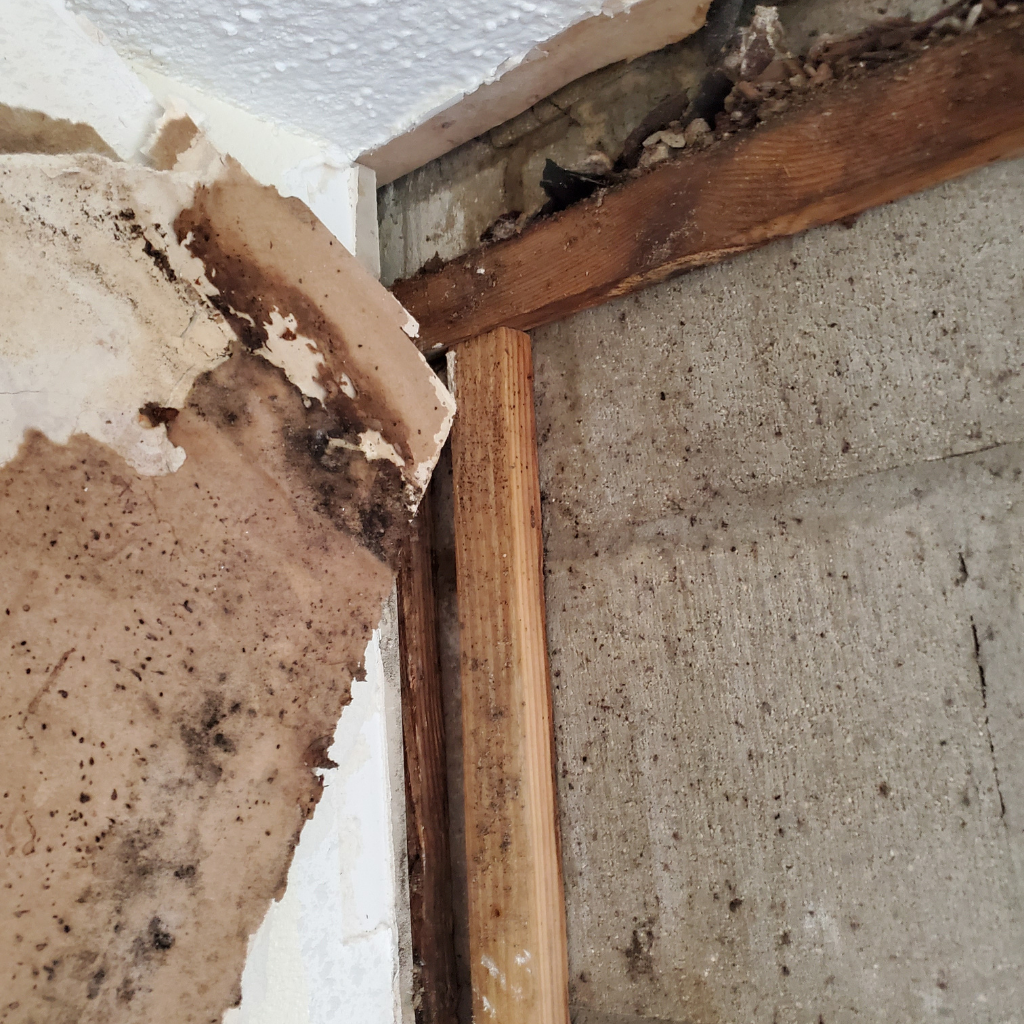 fire- damage- restoration- service