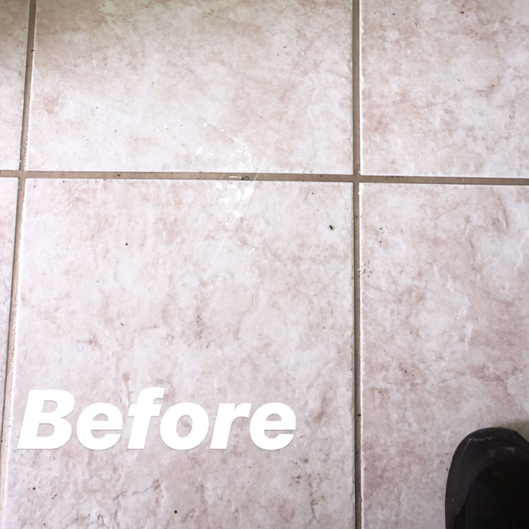 promaster cleaning expert